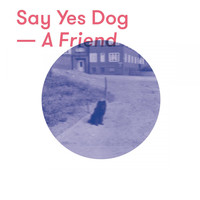 Say Yes Dog - A Friend