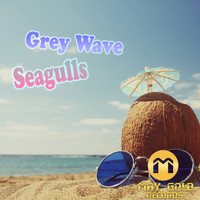 Grey Wave - Seagulls