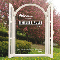 Hana - Timeless Pulse Vol. 2