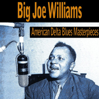 Big Joe Williams - American Delta Blues Masterpieces