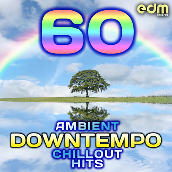 Various Artists - 60 Ambient, Downtempo, Chillout Hits (Best of Groovy, Down Beat, Lounge, World, Electronica)