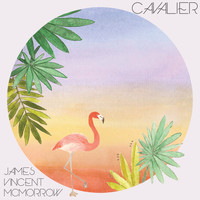 James Vincent McMorrow - Cavalier