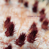 Cesare vs Disorder - Wide Close Up EP