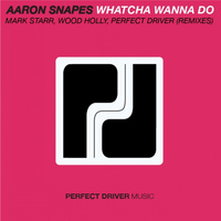 Aaron Snapes - Whatcha Wanna Do
