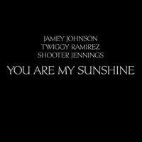 Jamey Johnson - You Are My Sunshine