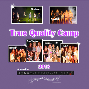 Various Artists - True Quality Camp 2013 - EP