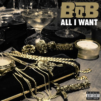 B.o.B - All I Want (Explicit)