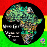 Mauro Gee - Voice Of Tribes