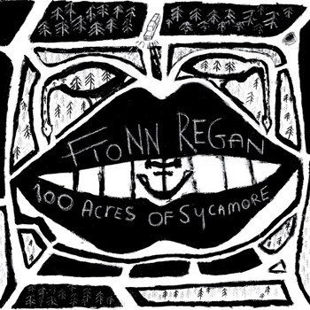 Fionn Regan - 100 Acres Of Sycamore