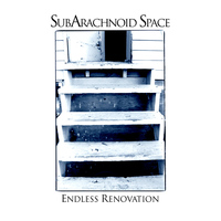 SubArachnoid Space - Endless Renovation