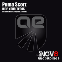 Puma Scorz - Hide Your Tears