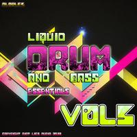 Liquid D&B Essentials 2013 Vol.5 by Various Artists