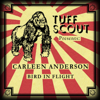 Carleen Anderson - Bird In Flight