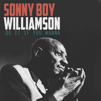 Sonny Boy Williamson - Do It If You Wanna