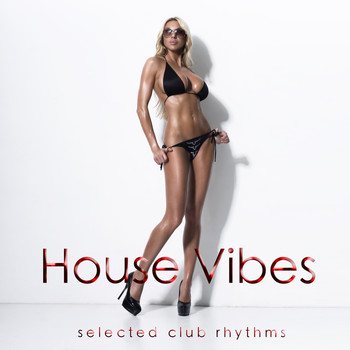 Various Artists - House Vibes