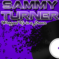 Sammy Turner - Wrapped up in a Dream