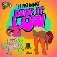 Bling Dawg - Drop It Low - Single