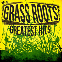 The Grass Roots - The Best of the Grass Roots