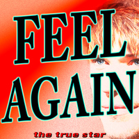 The True Star - Feel Again