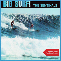 The Sentinals - Big Surf!