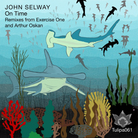 John Selway - On Time