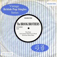 The Brook Brothers - Vintage British Pop Singles: The Brook Brothers