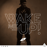 Avicii - Wake Me Up (Remixes II)