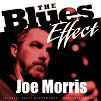 JOE MORRIS - The Blues Effect - Joe Morris