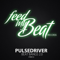 Pulsedriver - Beat Bangs 2.0