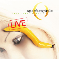 A Perfect Circle - Thirteenth Step - Live