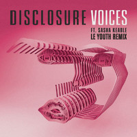 Disclosure - Voices (Le Youth Remix)