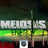 Meiosis - Energy