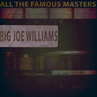 Big Joe Williams - All the Famous Masters