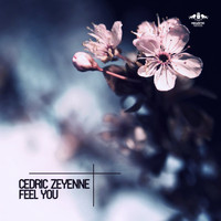 Cedric Zeyenne - Feel You