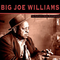 Big Joe Williams - The Fantastic Songs Masterpieces