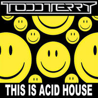 Todd Terry - This Is Acid House