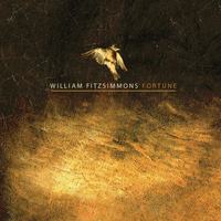 William Fitzsimmons - Fortune - Single