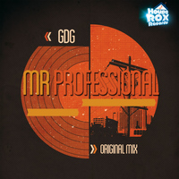 GDG - Mr Professional