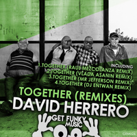 David Herrero - Together (Remixes)