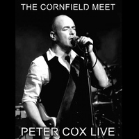 Peter Cox - Live at the Cornfield Meet - Peter Cox Live