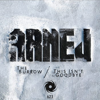 Arnej - The Burrow / This Isn't Goodbye