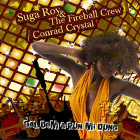 Suga Roy & The Fireball Crew - Gal Dem A Run Mi Dung - Single