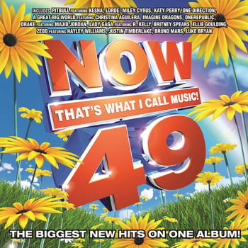 Various Artists - NOW That's What I Call Music Vol. 49