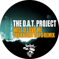 The D.A.T. Project - Will U Love Me - The Knight Cats Remix