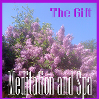 The Gift - Meditation and Spa