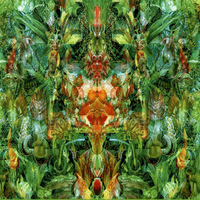 Bill Laswell - Emerald Aether: Shape Shifting/Reconstructions Of Irish Music