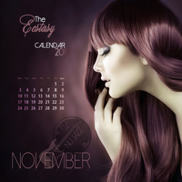 Various Artists - The Ecstasy Calendar 2014: November (Nu Jazz)