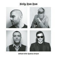 Birdy Nam Nam - Defiant Order (Remixes Project)