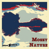 Mozzy - Nature
