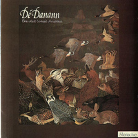 De Dannan - The Mist Covered Mountain